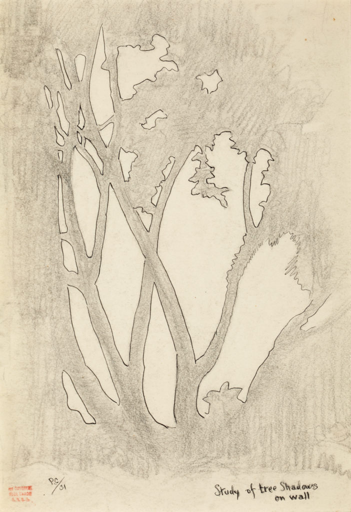 Drawing of tree shadows on a wall by Paul Caron.