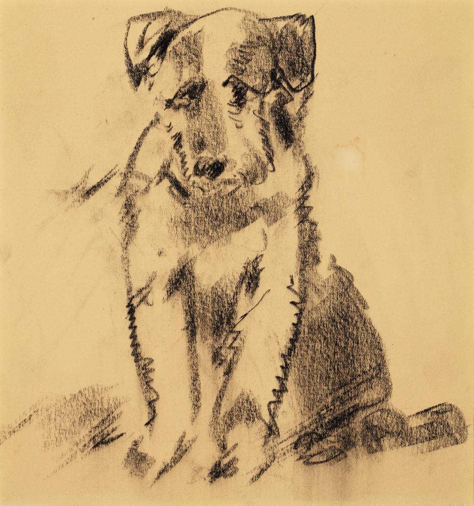 Sketch of a Fox Terrier dog by Arthur Lismer.